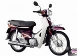 Honda Dream 100cc $8/days $50/week